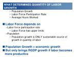 what determines quantity of labor growth