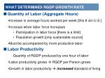 what determines rgdp growth rate1