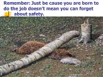 remember just be cause you are born to do the job doesn t mean you can forget about safety