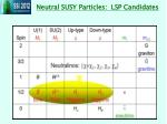 neutral susy particles lsp candidates