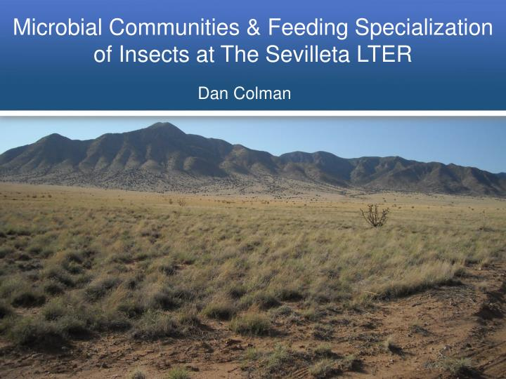 microbial communities feeding specialization of insects at the sevilleta lter n.