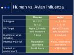 human vs avian influenza