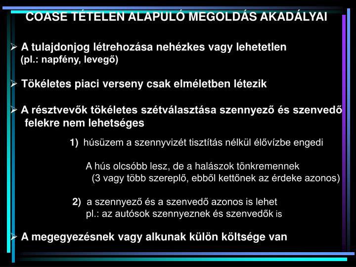 COASE TÉTELEN ALAPULÓ MEGOLDÁS AKADÁLYAI