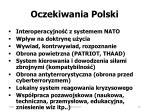 oczekiwania polski
