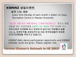 korean women s network in nz 20125