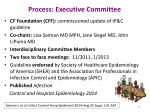 process executive committee
