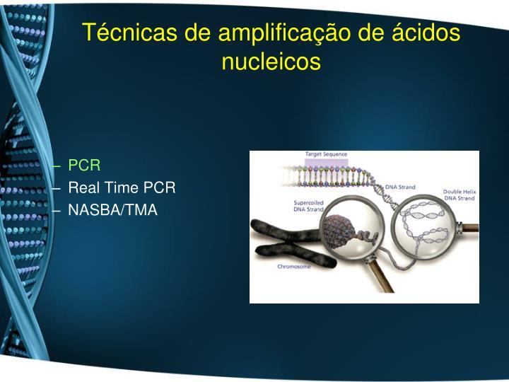 T cnicas de amplifica o de cidos nucleicos