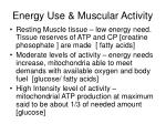 energy use muscular activity