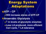 energy system adaptations