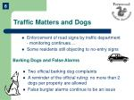 traffic matters and dogs