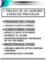 3 phases of an aerobic exercise program