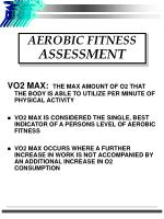 aerobic fitness assessment