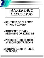 anaerobic glycolysis