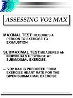 assessing vo2 max