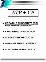atp cp