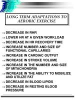 long term adaptations to aerobic exercise