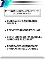 physiological effects of a cool down