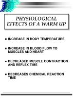 physiological effects of a warm up