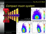 compact muon system