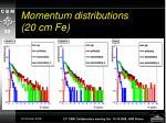 momentum distributions 20 cm fe