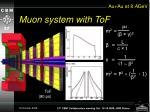 muon system with tof