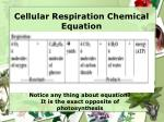 cellular respiration chemical equation