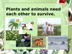plants and animals need each other to survive