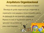 arquitetura organizacional novos desenhos para as organiza es do futuro
