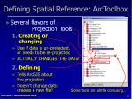 defining spatial reference arctoolbox