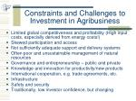 constraints and challenges to investment in agribusiness