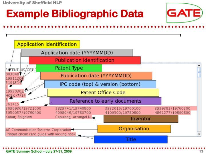Example Bibliographic Data