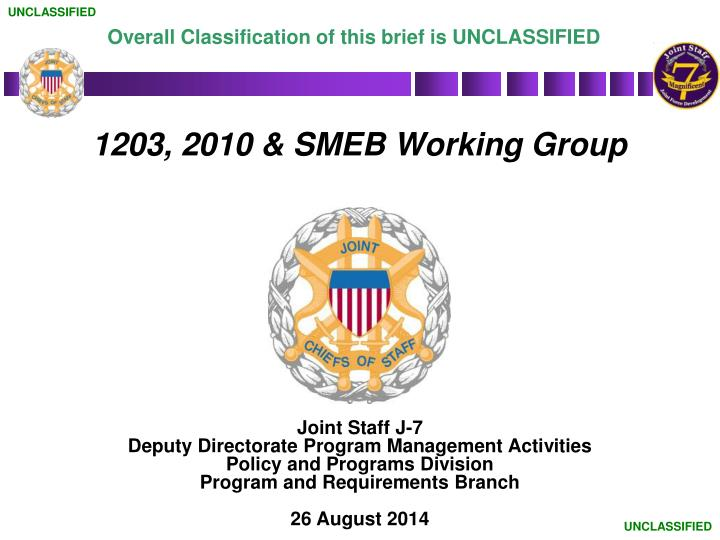 1203 2010 smeb working group n.