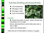 factors limiting photosynthesis