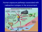 human exposure pathways associated with radioactive isotopes in the environment