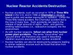 nuclear reactor accidents destruction