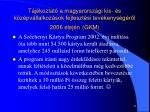 t j koztat a magyarorsz gi kis s k z pv llalkoz sok fejleszt si tev kenys g r l 2006 elej n gkm1