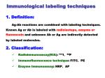 immunological labeling techniques