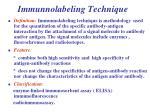 immunnolabeling technique