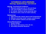 cutaneous larva migrans etiology epidemiology and clinical