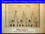 temperature chart of benign tertian malaria