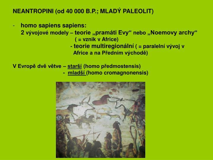 NEANTROPINI (od 40 000 B.P.; MLADÝ PALEOLIT)