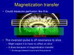 magnetization transfer