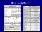 river habitat survey
