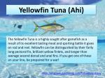 yellowfin tuna ahi
