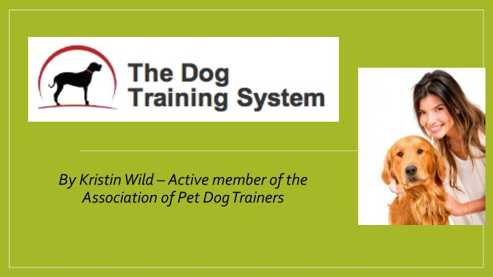 b y kristin wild active member of the association of pet dog trainers n.
