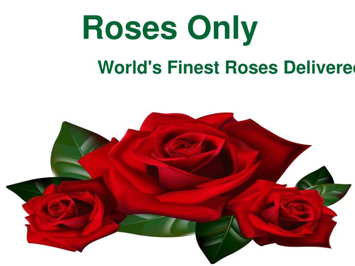 roses only n.