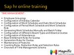 sap hr online training5