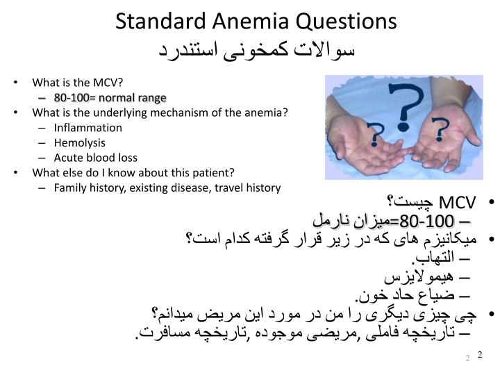 Standard anemia questions