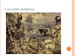 1 24 land animals
