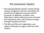 the autonomic system1